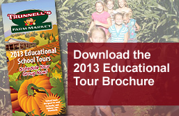 Educational School Tours