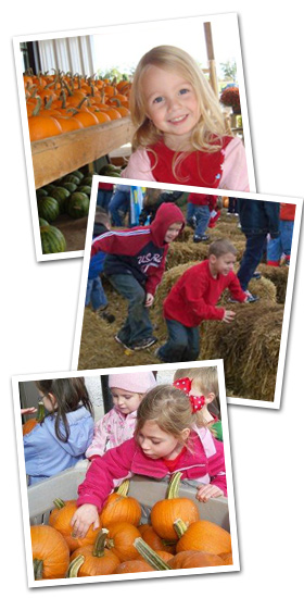 Fall Harvesting Tour at Trunnell's Farm Market in Kentucky