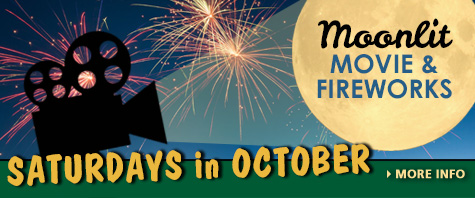 Movies & Fireworks - Saturday in October